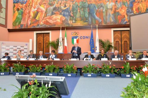13 - Salone d'Onore Coni, 2014, Convegno ANSMS